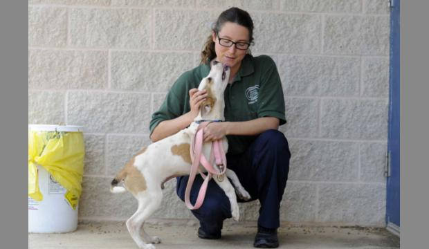 Augusta Animal Services AM Shift